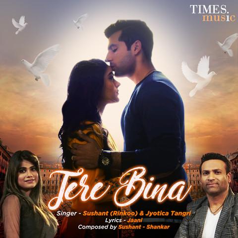 Tere Bina MP3 Song Download- Tere Bina Tere Bina Punjabi Song by