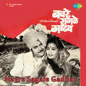 Navre Sagale Gadhav Mar Songs