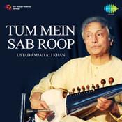 Tum Mein Sab Roop Songs
