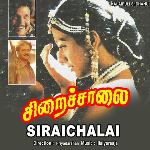 Gangai Amaran Tamil Songs Download- New Tamil Songs of Gangai Amaran, Hit  Tamil MP3 Songs List Online Free on Gaana.com