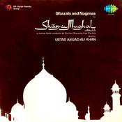 Shan E Mughal