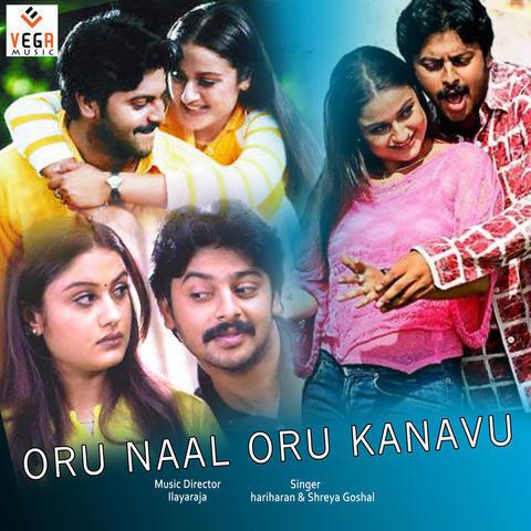 Do Numbri 4 Full Movie In Hindi Hd 1080p