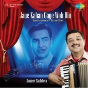 Jane Kahan Gaye Woh Din Instrumental Songs
