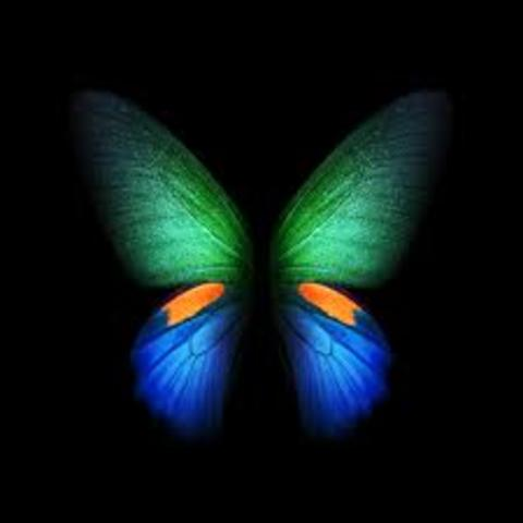 Aashiq banaya aapne full song mp3 free download mlsxsonar.
