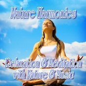 Nature Harmonies: Relaxation And Meditation With Music And Nature Songs