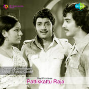 Pattikkattu Raja Songs