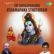 Sri Shivaaparadha Kshamapana Sthothiram