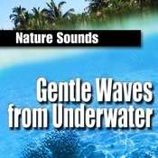 Gentle Waves From Underwater (Nature Sounds) Songs