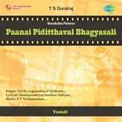 Paanai Piditthaval Bhagyasali Songs