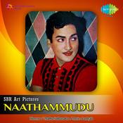 Naathammudu