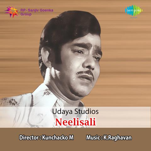Nayapaisayilla MP3 Song Download- Neelisali Nayapaisayilla Malayalam