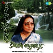 Best Of Sreeradha Banerjee Songs