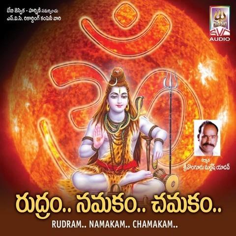 Rudram, namakam, chamakam    lord shiva telugu devotional songs.