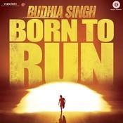 Born To Run Anthem Song