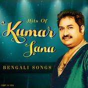 Download Bengali Video Songs - Ekdin Konodin