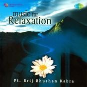 Music For Relaxation - Pandit Brij Bhushan Kabra Songs