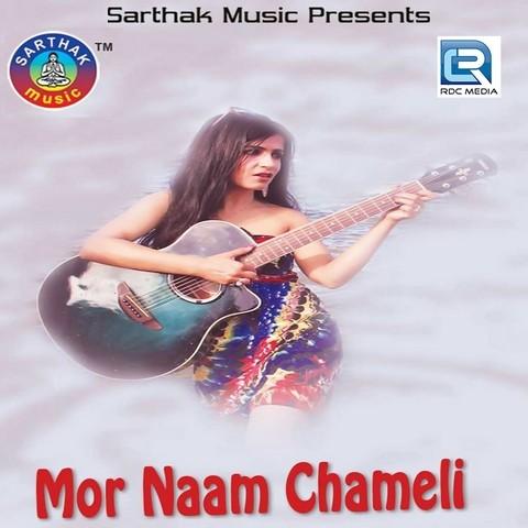 South main hindi film video movie pardesi babu