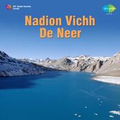 Nadion Vichh De Neer
