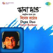 Dana Dao - Vinod Rathore