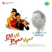 Dil Vil Pyar Vyar (music Tracks) Songs
