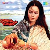 Nainon Mein Jal Bhar Aaye Song