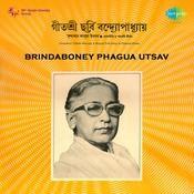 Brindaboney Phagua Utsav