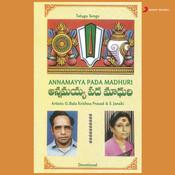 Narayanudeethadu  Song