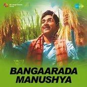 Bangarada Manushya Songs