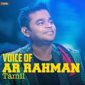 Voice of AR Rahman -Tamil