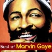 marvin gaye lyrics