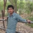 Sharad Vijay