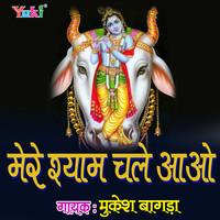 Bhar De Re Shyam Jholi Bharde