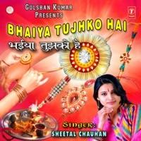 Bhaiya Tujhko Hai