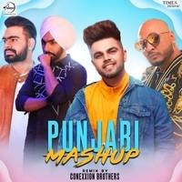 Punjabi Mashup