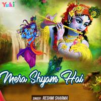 Mera Shyam Hai