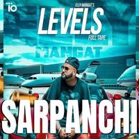Sarpanchi
