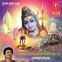 Bhole Shankar Ji Kaaj Sanwaro