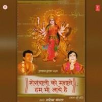 Sherawali Ko Manane Hum Bhi Aaye Hain