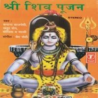 Rudrashtak(Namaamishamishaan& & )