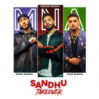 Sandhu Takeover