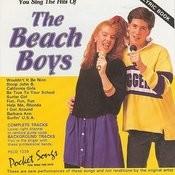 The Hits Of The Beach Boys Songs