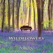 Wildflowers Songs