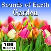 Sounds Of Earth: Garden Songs
