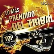 Lo Más Prendido Del Tribal Y Más Vol. 1 Songs