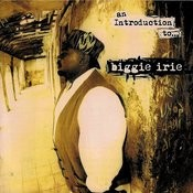 An Introduction To…biggie Irie Songs