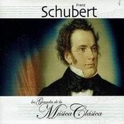 Piano Quintet In A Major, D. 667: III. Scherzo: Presto Song
