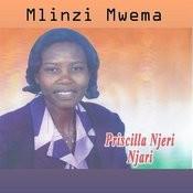 Mlinzi Mwema Songs