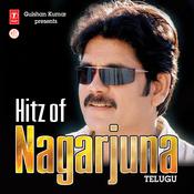 Hitz Of Nagarjuna Songs