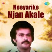 Neeyarike Njan Akale Mlm Songs