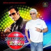 DJ Sheizwood Rocks Songs